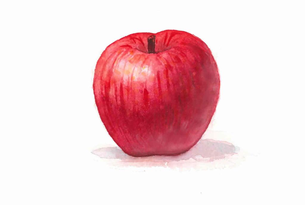 ブログ用リンゴ
