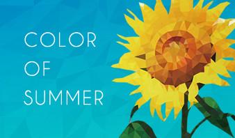【配色の参考に!】夏っぽい写真から、Webサイトの配色を決める、夏の配色8選!