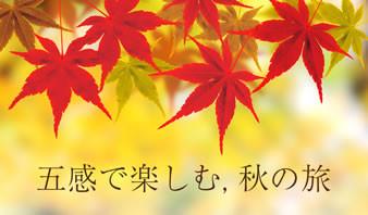 五感で楽しむ秋の旅