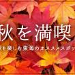 blog_aki
