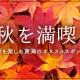 秋を満喫!秋を楽しむ東海のオススメスポット